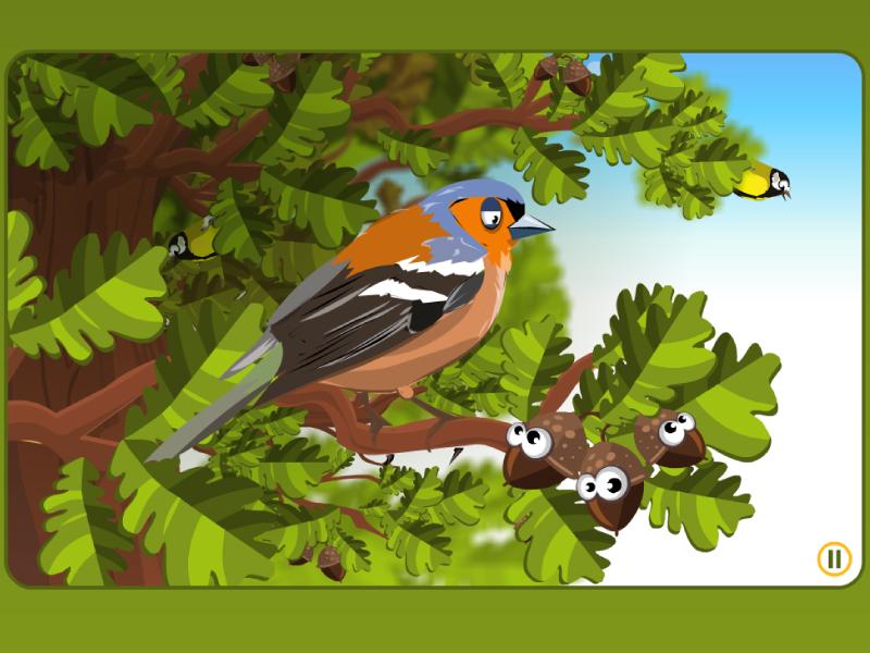 Studio Ilustratorskie Bird Rumors Studio Ilustratorskie
